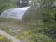Дачная теплица из поликарбоната шириной 3 м длиной 4 м