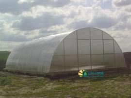 Промышленная теплица из поликарбоната шириной 6 метров