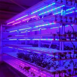 Светильник для растений FITO