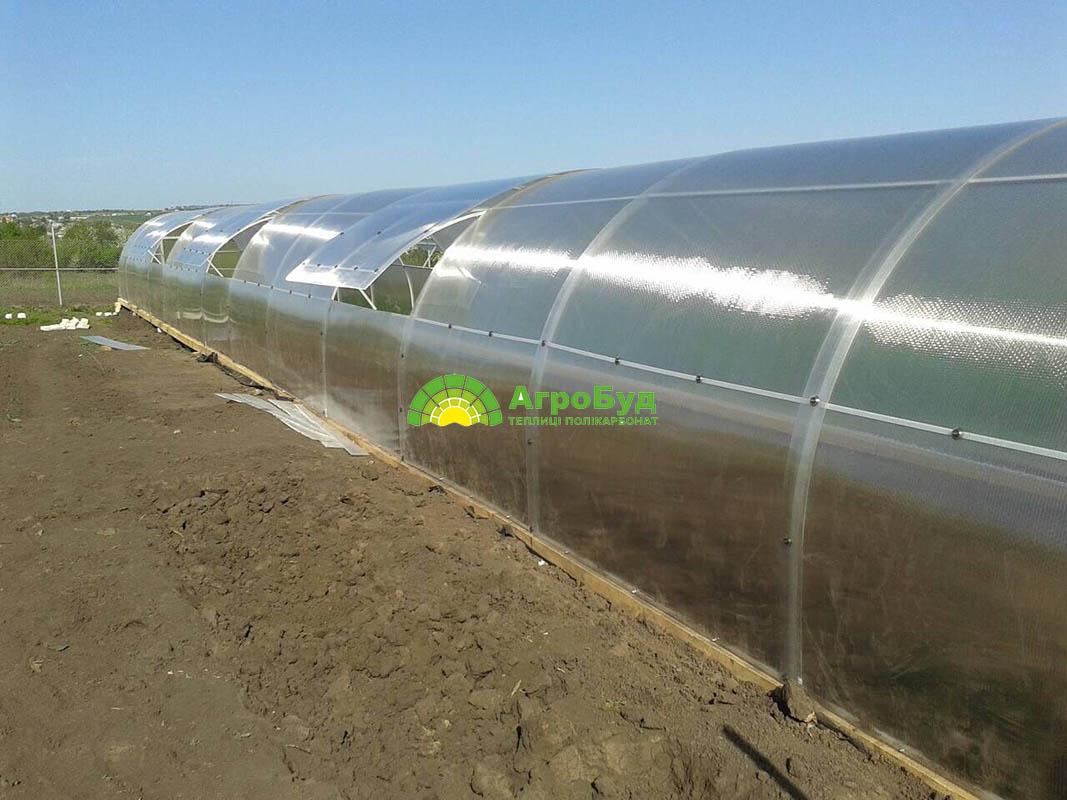 Большая поликарбонатная теплица 3x26 метров
