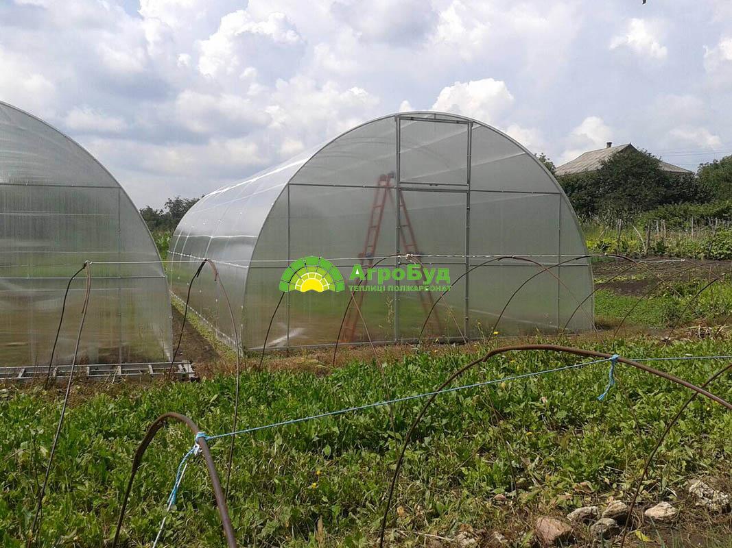 Фермерская теплица 5х12 метров